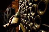 A man holding a bottle of old wine at a wine cellar, Terlan, South Tyrol, Italy, Europe