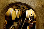 View at wine barrels and bottles at a wine cellar, South Tyrol, Italy, Europe