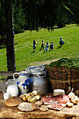Picnic with South Tyrolean ham, bread and potatoes, Alpine meadow, Children playing in the background, Farm holidays, Agriculture, South Tyrol, Italy