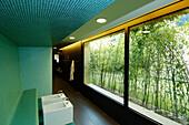 Fenster mit Pflanzen in Therme Meran, Sauna in Thermalbad, Meran, Südtirol, Italien