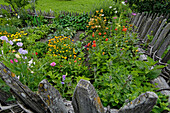 Vegetable garden with flowers in the South Tyrolean local history museum at Dietenheim, Puster Valley, South Tyrol, Italy