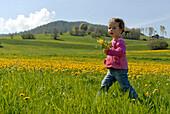 Little girl on a flower meadow in the sunlight, Völs am Schlern, South Tyrol, Italy, Europe