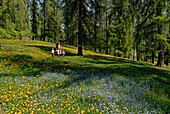 Family strolling over a flower meadow, South Tyrol, Italy, Europe