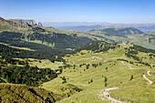 Wanderweg in einer Hügellandschaft im Naturpark Schlern, Schlern, Eisacktal, Südtirol, Italien, Europa