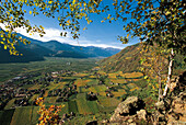Autumn landscape, view over the Etsch valley, Wine Growing area, Terlan, South Tyrol, Italy