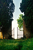 View at a garden gate, Val d'Orcia, Tuscany, Italy, Europe