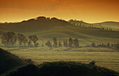 Landscape in the morning mist, Val d'Orcia, Tuscany, Italy, Europe