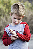 A young caucasian boy, 5-10, inspects a snakeskin he found outdoors.