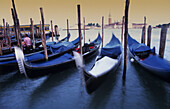 Gondolas, Santa Maria della Salute in the background, Venice, Italy
