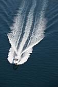 Touristic speed boat near the port of Palma de Mallorca, Spain.