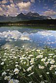 Alberta, America, Boulders, Canada, Clouds, Color, Colour, Destination, Environment, Jasper, Lands, Likens, National, North, Park, Public, Reflection, Rockies, Rocks, The, Travel, T89-698780, agefotostock