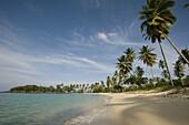 Playa Rincón, Samaná Peninsula, Dominican Republic