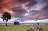 Sunset at Lake Taupo; Waikato; North Island; New Zealand