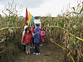 Kids in a corn maze.