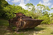 Japanese Amphibious Tank II World War, Peleliu Island, Micronesia, Palau