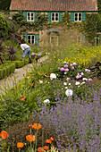 Gardener at work Spider Garden at Hoveton Hall Norfolk
