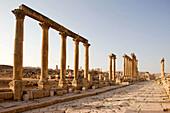 Cardo maximus greco roman colonnaded street ruins. Jerash. Jordan.