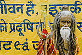 50 to 60 years, 50-60 years, 55 to 60 years, 55-60 years, Beard, Begging, Cane, Fifties, Graffiti, Hindi, India, Man, Old, Orange, Portrait, Priest, Religion, Sadu, Writing, F17-704593, agefotostock