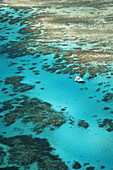 Tongue Reef and Yacht, Great Barrier Reef Marine Park, North Queensland, Australia - aerial