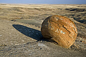 Eroded sandstone boulders exposed in semi-arid landscape at dawn
