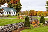 Fall decor with pumpkins at the Cedar Grove Farm near Peacham, Vermont, USA
