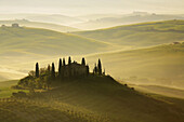 Cypress, Italian Cypress, Cupressus sempervirens, Zypresse, vineyards, country house, farm house, hill countryside, misty atmosphere, spring, agricultural landscape, Tuscany  Toskana, Italy
