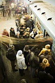 Car, Cars, Cities, City, Color, Colour, Europe, Human, Locations, Long, Moscow, Passenger, Passengers, People, Person, Persons, Perspective, Platform, Platforms, Public, Russia, Station, Stations, Stopped, Subway, Transport, Transportation, Travel, Travel