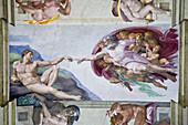Michelangelo's 'Creation of Adam', Sistine Chapel, Rome, Italy