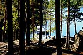 View through trees at a yacht at the shore, Linnansaari Island, Linnansaari National Park, Saimaa Lake District, Finland, Europe