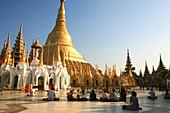 Praying buddhists at the Shwedagon Pagoda in the light of the evening sun, Rangoon, Myanmar, Burma, Asia