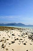 Beach on uninhabited island in the sunlight, Mergui Archipelago, Andaman Sea, Myanmar, Burma, Asia