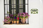 House detail, Zahara de la Sierra. Pueblos Blancos (white towns), Cadiz province, Andalucia, Spain