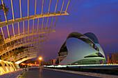Palace of Arts Reina Sofia by S. Calatrava at dusk, City of Arts and Sciences, Valencia. Comunidad Valenciana, Spain