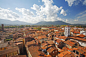 Lucca view from above, Tuscany, Italy