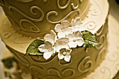 Close up, Close-up, Closeup, Color, Colour, Cuisine, Decorated, detail, details, elegance, elegant, flower, flowers, Food, Foodstuff, indoor, indoors, interior, Monochromatic, Monochrome, Nourishment, Ornate, Pastries, Pastry, Ready, Sweet, Tradition, Tra