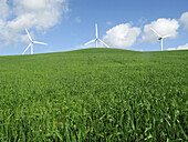 Alternative energies, Alternative energy, Blue, Color, Colour, Country, Countryside, Daytime, Ecology, Environment, exterior, Green, Hill, Hills, nature, outdoor, outdoors, outside, Renewable energy, scenic, scenics, Three, White, Wind power, Wind turbine