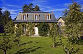 France, Ile de france, park, castle, breteuil: apple orchard
