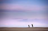 Dos siluetas caminan a pesar de las ráfagas de viento en la Platja del Trabucador;  Delta del Ebro, Parque Natural. Tarragona; Spain.