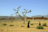 People in a barren landscape under clear sky, Draa valley, South Morocco, Morocco, Africa
