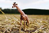 Toy giraffe standing on straw