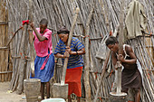 NAMIBIA  Women preparing food by pounding grain   Nyangana, a small village and mission station in the north of the country on the Angolan border