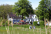 D, Germany, Mecklenburg Western Pomerania, Hiddensee, Isle, Baltic Sea, Kloster, Building, House, Restaurant, Villa, Idyllic, Gastronomy