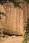 USA, Arizona, Chinle  Canyon de Chelly National Monument in the Navajo Indian Reserve  White House Ruin cliff dwelling
