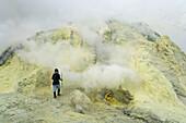 Sulphur workers, Kawa Ijen, Ijen Plateau, East Java, Indonesia. Sulphur workers collecting sulphur rocks from volcano