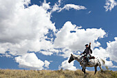 Horse rider in the outback New Zealand