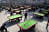 Asian, Asians, Ball, Ball game, China, Chinese, Color, Colour, Games, Ping pong, Ping-pong, Pingpong, Qinghai, Sport, Sports, Table tennis, Xining, U12-810202, agefotostock