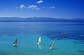Sail boarders at Golden Horn in the sunlight, Brac island, Croatian Adriatic Sea, Dalmatia, Croatia, Europe