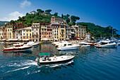 A driving motor boat in front of the marina, Portofino, Liguria, Italian Riviera, Italy, Europe