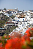 Houses at a mountainside in the sunlight, Fira, Santorini, Greece, Europe