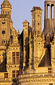 Chimneys of the Palace of Chambord, built by King François I  in Renaissance style, on the list of World Cultural Heritage sites of UNESCO, Loir  et Cher, France